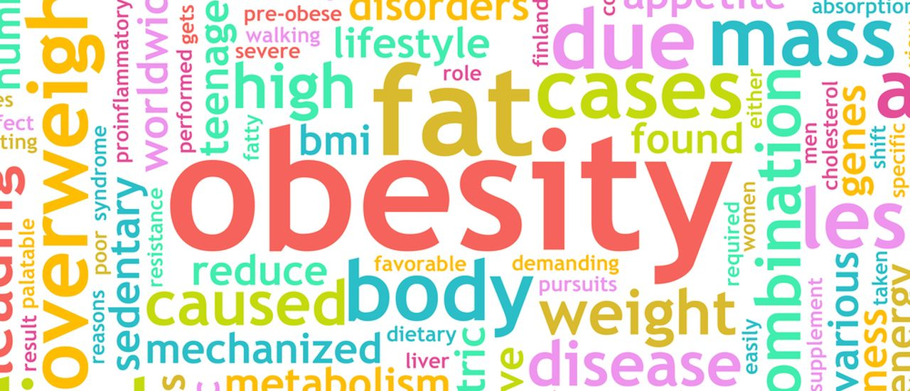 How being obese or overweight can damage your heart