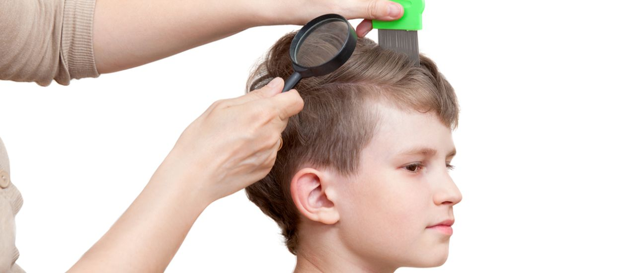 What every parent should know about head lice