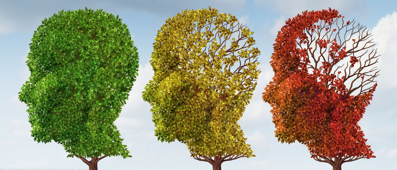 Can Alzheimer's be cured?