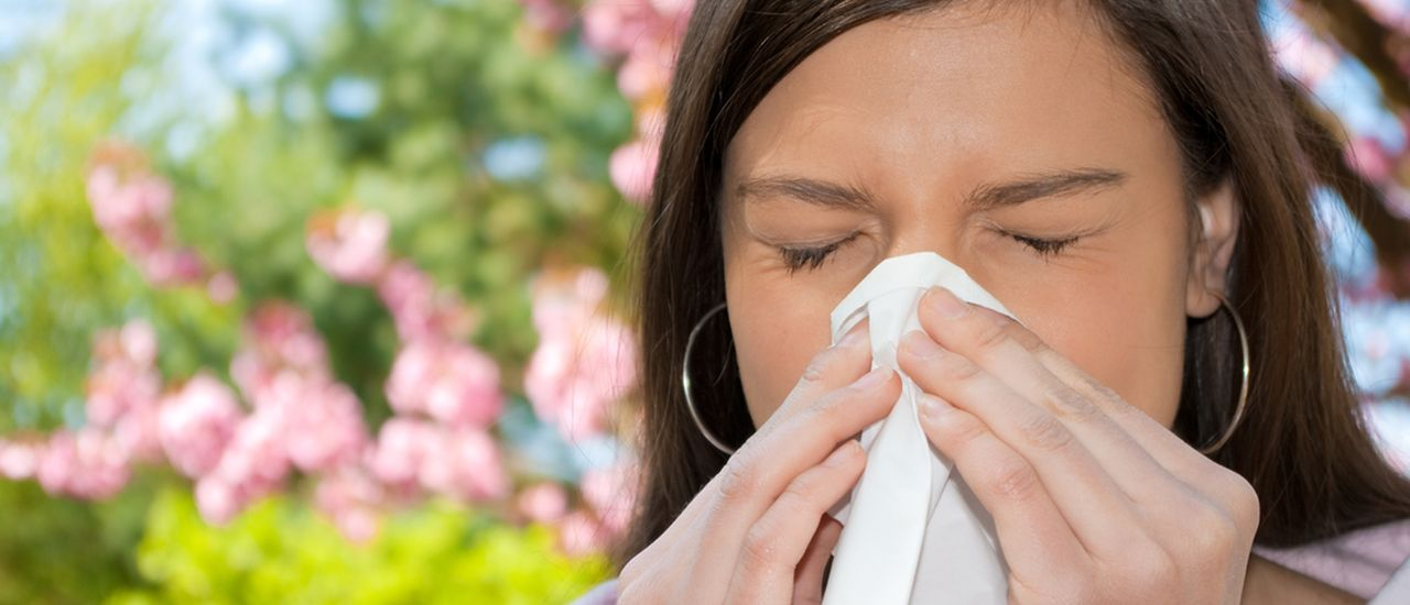 Stop hay fever in its tracks!