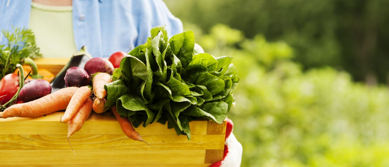 Are organic foods better for you?