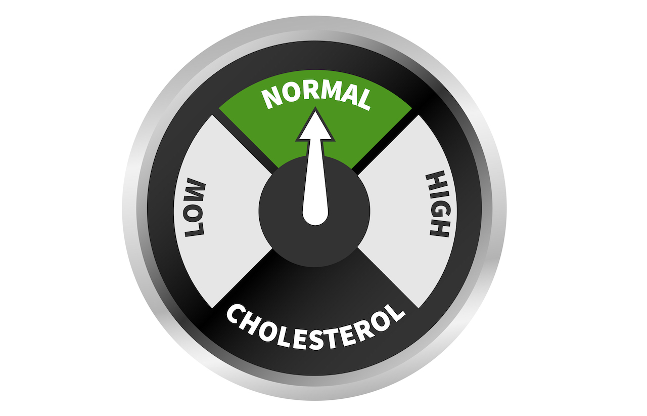 Is cholesterol really that bad?