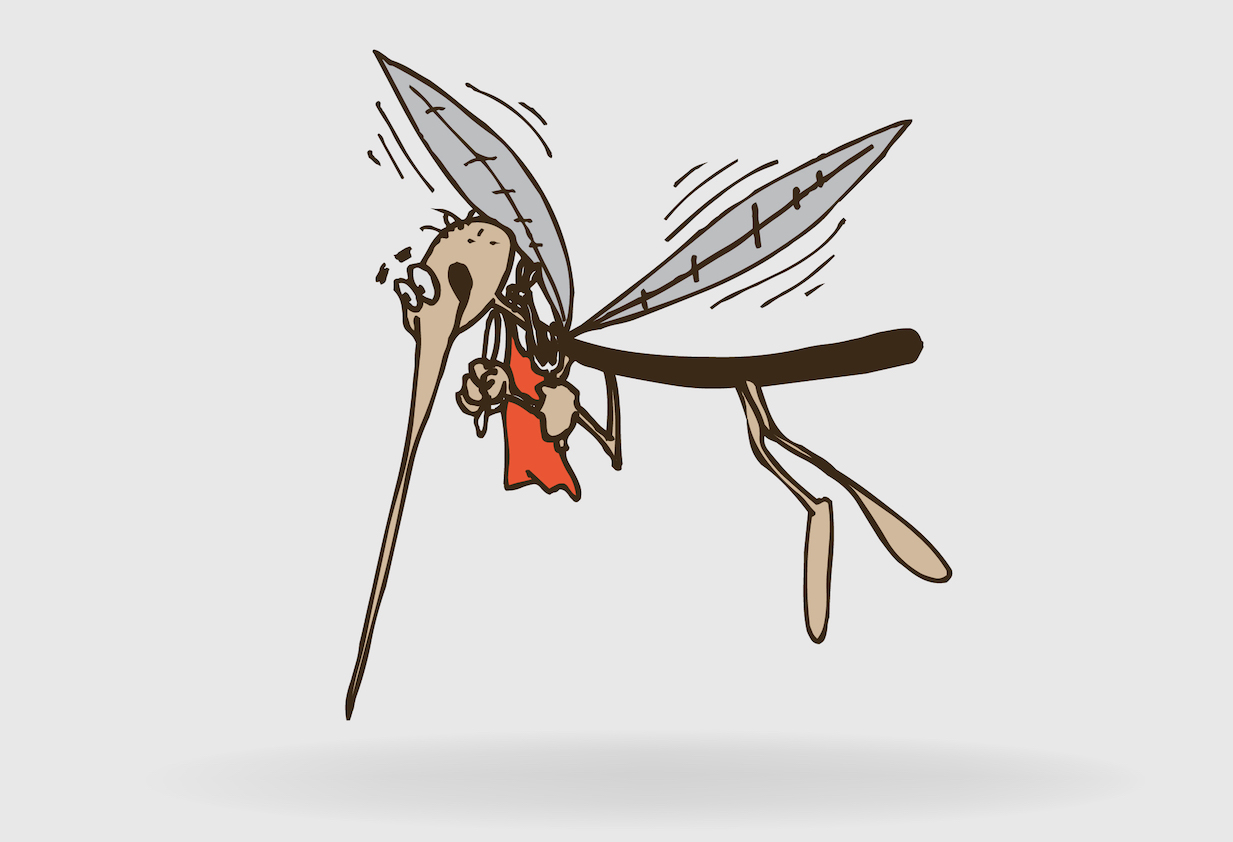 How mosquitoes choose their victims