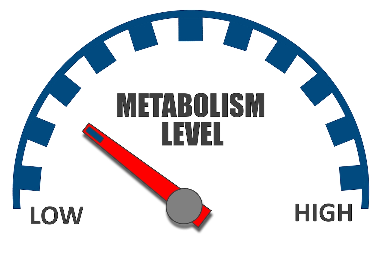The best ways to boost your metabolism