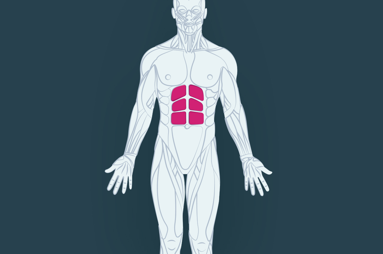 7 common myths about six-pack abs